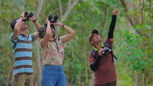 the menjangan bird watching