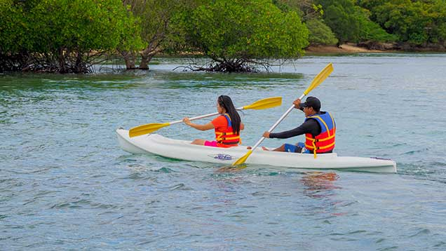 the menjangan kayaking tandem