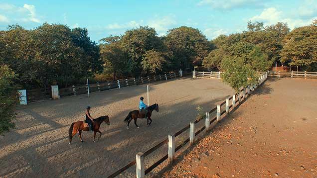 hoseback riding practice arena